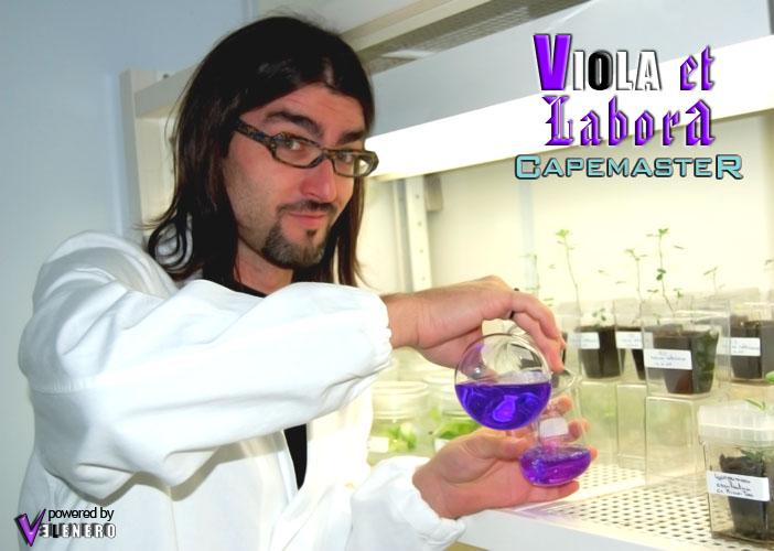cape_viola